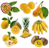 Gula söta frukter samling isolerade på vit — Stockfoto
