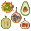 Collection exotic fresh fruits — Stock Photo