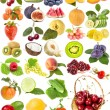 Large collection fruit, berries vegetables - Stock Photo