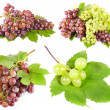 Stock Photo: Grapes with leaves, isolated
