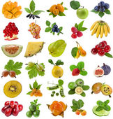 Collection of ripe fruits and berries — Stock Photo