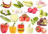 Raccolta di verdure su sfondo bianco — Foto Stock