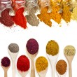 Border frame of colorful powder spices with copy space for text isolated on a white background — Stock Photo #14461657