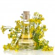 Flower of a rapeseed, Rape blossoms with bottle decanter oil, isolated on white background — Stock Photo #14462089