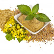 Stock Photo: Mustard dish sauce and powder, seeds with mustard flower bloom on white