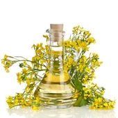 Flower of a rapeseed, Rape blossoms with bottle decanter oil, isolated on white background — Stock Photo