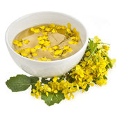 Mustard oil dish with mustard flower bloom on white — Stock Photo