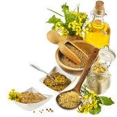 Mosterdolie kruik en mosterd poeder lepel, zaden scoop, met verse mosterd bloemen op wit — Stockfoto