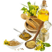 Mustard oil jar and mustard powder spoon, seeds scoop, with fresh mustard flower on white — Stock Photo