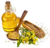 Cuchara de aceite de mostaza tarro y mostaza en polvo, cucharada de semillas, con flores frescas mostaza en blanco — Foto de Stock