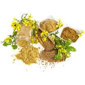 Molho de mostarda e mostardas sementes com mostarda flor flor isolado no branco — Foto Stock