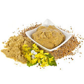 Mustard dish sauce and powder, seeds with mustard flower bloom on white — Stock Photo