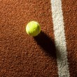 Tennis court — Stock Photo #14474447