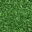 Artificial grass meadow lawn plastic background texture — Stock Photo #14474781
