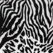 Stock Photo: Black and white texture of zebra skin