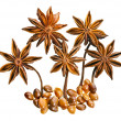 Star anise (badiane) isolated on white - Stock Photo