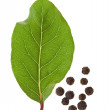 Stock Photo: Fresh bay laurel leaf with peppercorn isolated on white