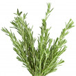 Rosemary herb isolated on white background — Stock Photo