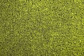 Fake grass for tennis courts — Stock Photo