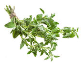 Fresh leaves oregano (marjoram) isolated — Stock Photo