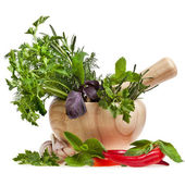 Fresh herbs with spices in a mortar isolated on white — Stock Photo