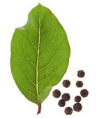 Fresh bay laurel leaf with peppercorn isolated on white — Stockfoto