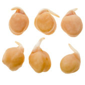 Chick peas isolated — Stock Photo