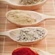 Royalty-Free Stock Photo: Various spice powder mix in a wooden spoons on white background