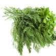 Fresh dill and parsley green isolated on white background — Stock Photo