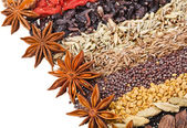Indian different spices on white — Stock Photo