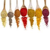Sortiment av pulver kryddor på skedar isolerad på en vit bakgrund — Stockfoto