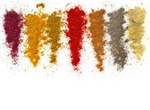 Assortiment van poeder specerijen geïsoleerd op een witte achtergrond — Stockfoto