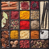 Powder spices in wooden box — Stock Photo