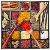 Assortment of powder spices on spoons in wooden box isolated on a white background — Stock Photo