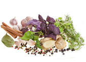 Fresh herbs and spices isolated on white — Stock Photo