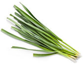 Young green garlic leaves — Stock Photo
