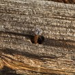 Old ancient wood texture a rusty four-sided nail — Stock Photo