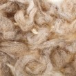 Wool fleece texture — Stock Photo #14867991
