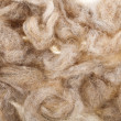 Wool fleece texture - Stock Photo