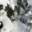 Stock Photo: Fir branches in snowdrift with Christmas snowflake