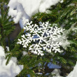 Fir branches in the snowdrift with Christmas snowflake - Stockfoto