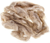 Wool fleece — Stock Photo