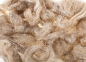Wool fleece texture — Stock Photo