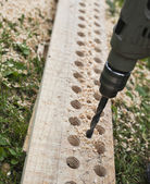 Drills a tree. To drill a board. — Stock Photo