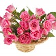 Bouquet pink roses in a basket isolated on white background - Foto de Stock