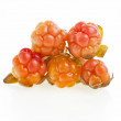Cloudberry isolated on white — Stock Photo #14935733