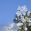 Fir branches in the snowdrift with Christmas snowflake against the blue sky — Stock Photo #14936283