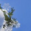 Fir branches in the snowdrift with Christmas snowflake against the blue sky — Stock Photo #14936315