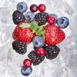 Fresh berries on the ice cubes — Stock Photo
