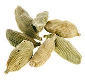 Cardamon spice geïsoleerd op een witte achtergrond — Stockfoto